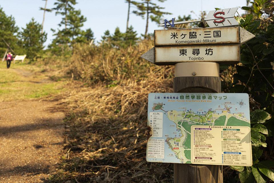 Suicid in Japan